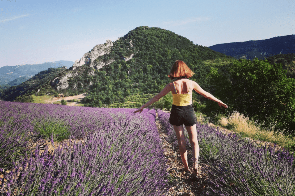 Paysage Drôme